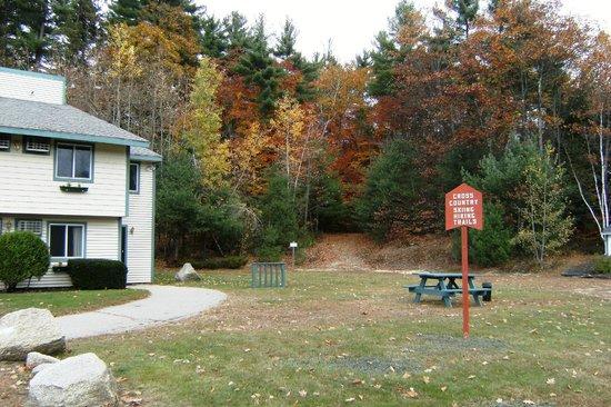 Eastern Inn & Suites: hiking/cross-country ski trails