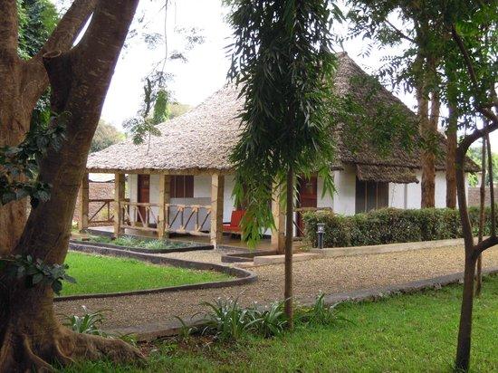Honey Badger Lodge: Room from outside