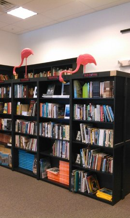 Sandman Book Company : Fred and Ginger the Flamingos