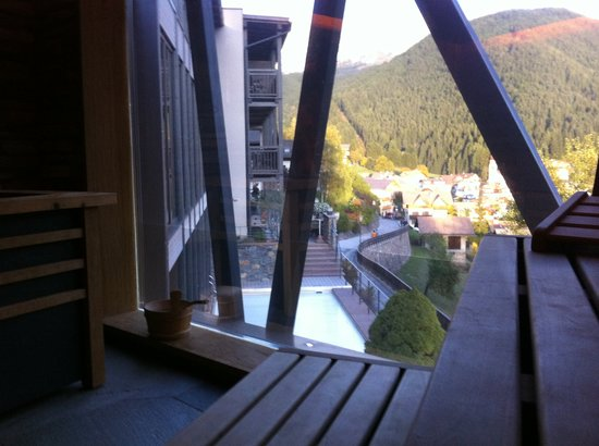 Friedrich Hotel : view from the inside of the sauna