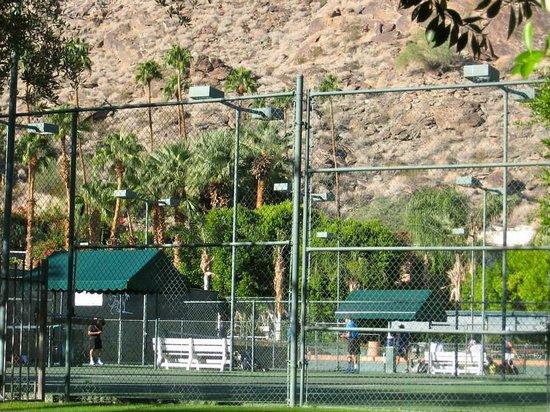 Palm Springs Tennis Club: Tennis Courts
