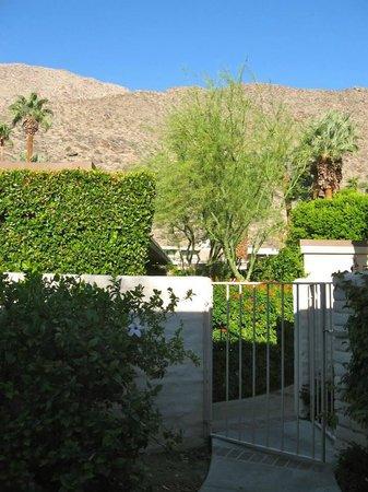Palm Springs Tennis Club: Patio view of mountains