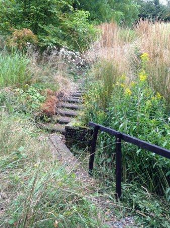 Fancroft Mill & Garden: Grass Garden