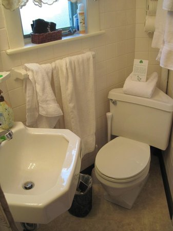 Beech Tree Inn- Brookline: Tight quarters in Room 3 bathroom