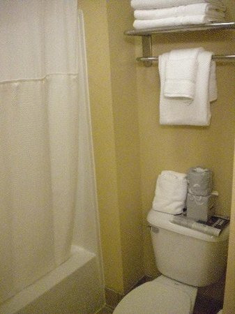 Staybridge Suites Chantilly Dulles Airport: Banheiro