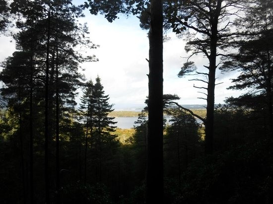 Torc Mountain Walk: View from above the waterfall