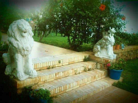 Hotel Carmen Teresa: gardens