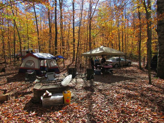 Nick's Lake Campground : Our site at Nick's Lake