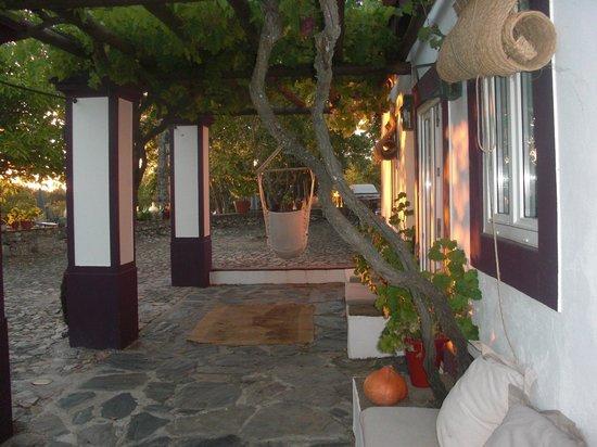 Quinta da Dourada : Exterior - hamacas y asientos