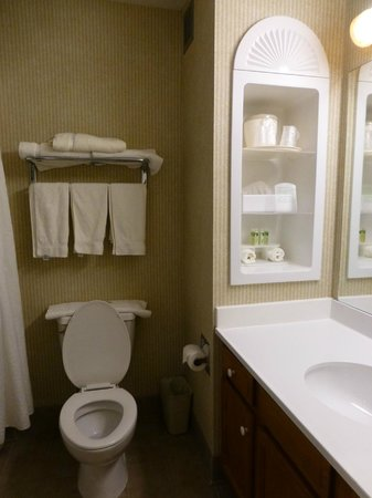Holiday Inn Express Hotel & Suites White River Junction: Very clean bathroom; great bath products