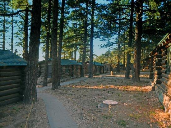Grand Canyon Lodge - North Rim: Cabins