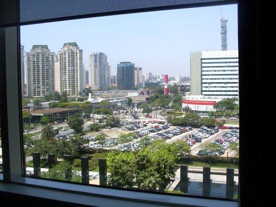 Grand Hyatt Sao Paulo: Vista