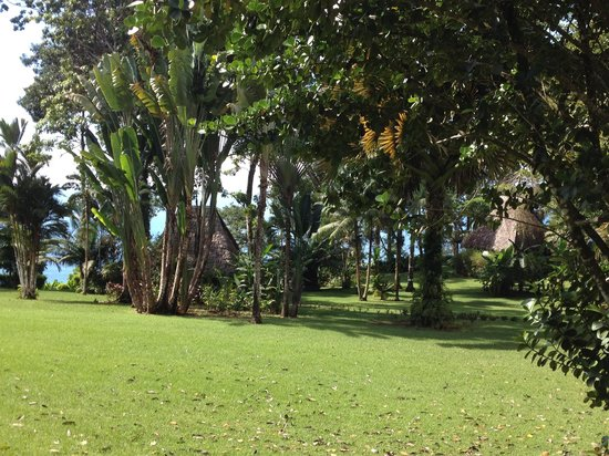 Bosque del Cabo Rainforest Lodge: View of the grounds