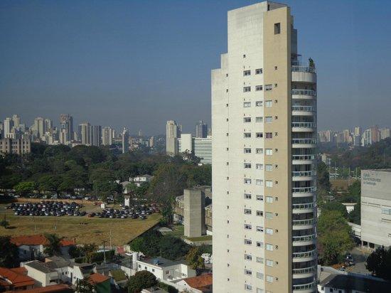 Pullman Sao Paulo Ibirapuera: Vista do Parque do Ibirapuera