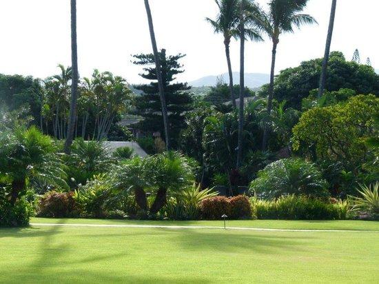The Mauian Hotel on Napili Beach: Garden view