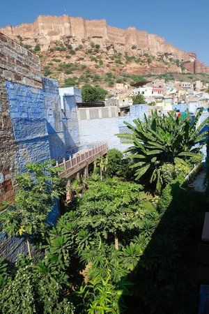Bristows Haveli: garden with the fort above.