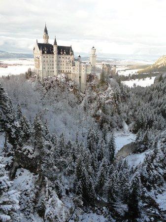 European Castles Day Tours: Castelo