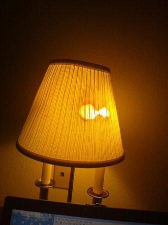 Amelia Inn & Suites: Lamp shade