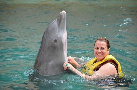 Dolphinaris Cozumel: anita dancing with dolphin