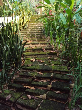 Suanthip Vana Resort: stairway to heaven?