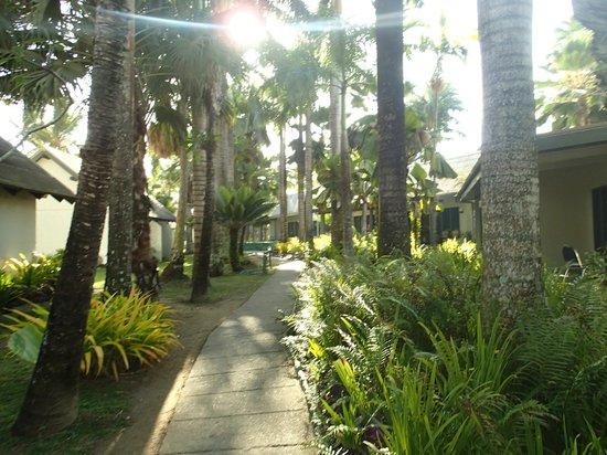 Fiji Hideaway Resort & Spa: gardens around the bures