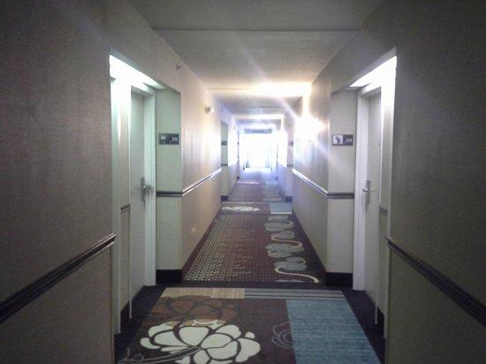 Hampton Inn Port Charlotte / Punta Gorda: Hallway