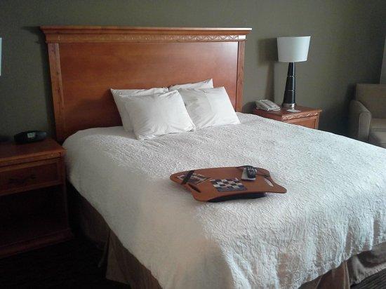 Hampton Inn Port Charlotte / Punta Gorda: Bed