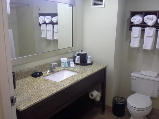Hampton Inn Port Charlotte / Punta Gorda: Bathroom