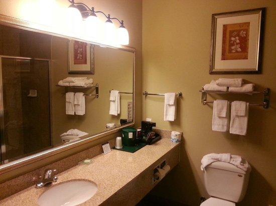Country Inn & Suites By Carlson, Tyler South : Bathroom.