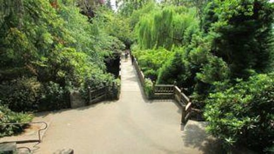 Crystal Springs Rhododendron Garden : Easy Access Path