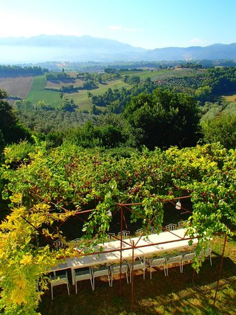Villa Pianciani: Overlooking the outdoor dining area and Spoleto valley