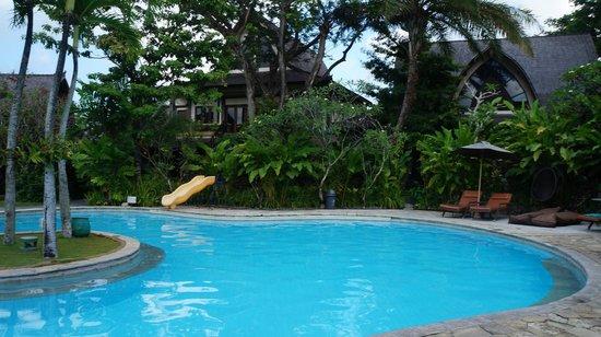 Hotel Vila Lumbung: Pool area