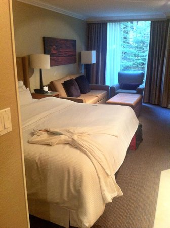 The Westin Resort & Spa, Whistler : Deluxe Studio Suite