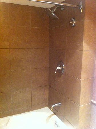 The Westin Resort & Spa, Whistler : Deluxe Studio Suite - Bathroom - Shower