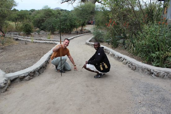 Bright African Safaris: Saleem and I tracking animals