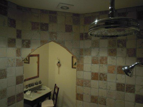Mas la Pomarède : Vue depuis la gigantesque douche...