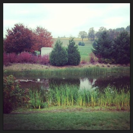 Stoller Family Estate: Sweet little pond on the way out