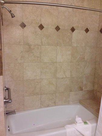 Moonstone Landing: shower/tub combo