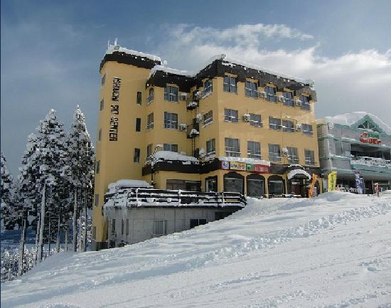 Photo of Ishiuchi Ski Center Minamiuonuma