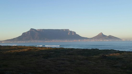 Atlantic Palms: Table Mountain, one of the Seven Wonders of the World