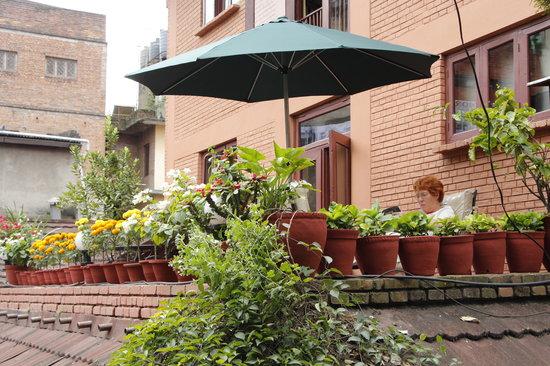 Hotel Mandap: Guest enjoying her book on our beautiful terrace garden.