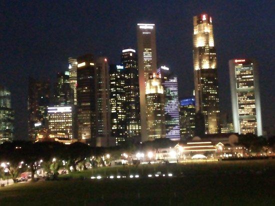 The Residence At Singapore Recreation Club: Ещё вид с террасы