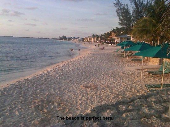 Plantation Village Beach Resort: Gorgeous white sand beach, stunning sunsets every evening on the beach
