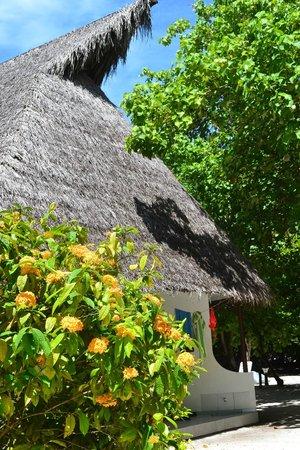Fihalhohi Island Resort: крыши домиков