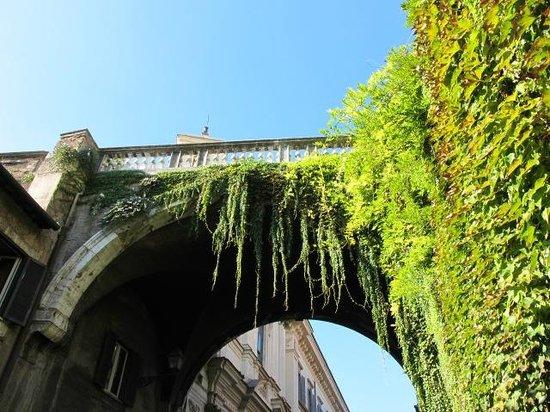Arco Farnese