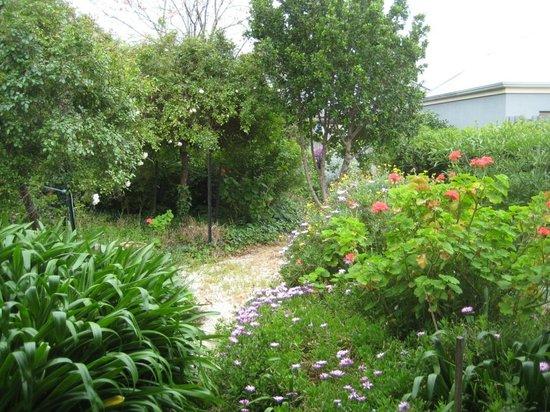 Victoria House: Garden