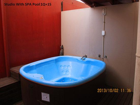 Gateway International Motel: Room3 spa pool