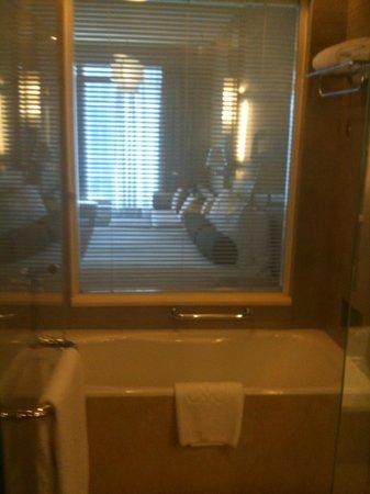 Hotel Nikko Tianjin : bathroom