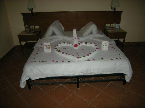 Sea Gardens: Bed art