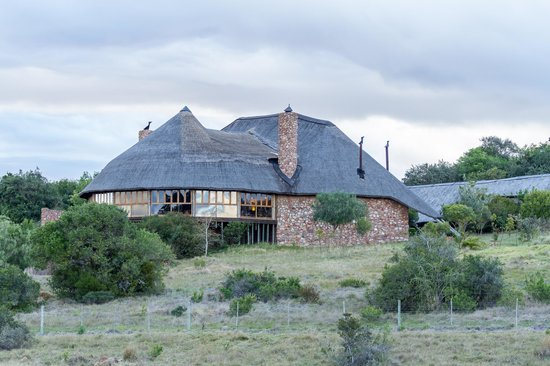 Kwantu Private Game Reserve: The Day Room